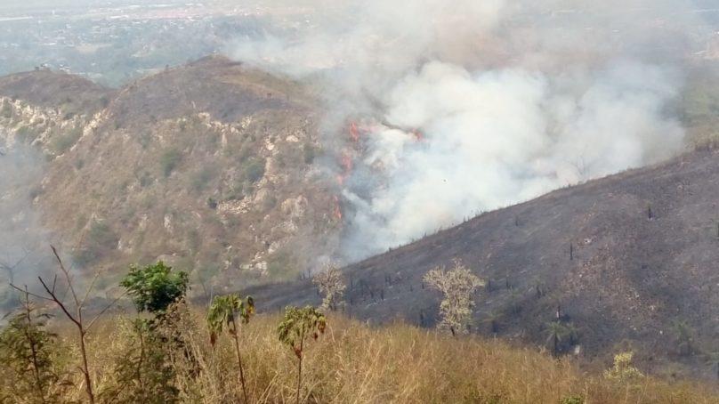 Incendio consume varias hectáreas de bosque en Montaña Grande, Francisco Morazán.